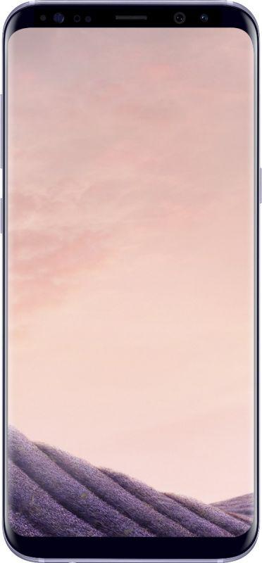 Смартфон Samsung Galaxy S8 64GB Orchid Gray купить