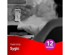 Навигатор Sygic на 12 месяцев